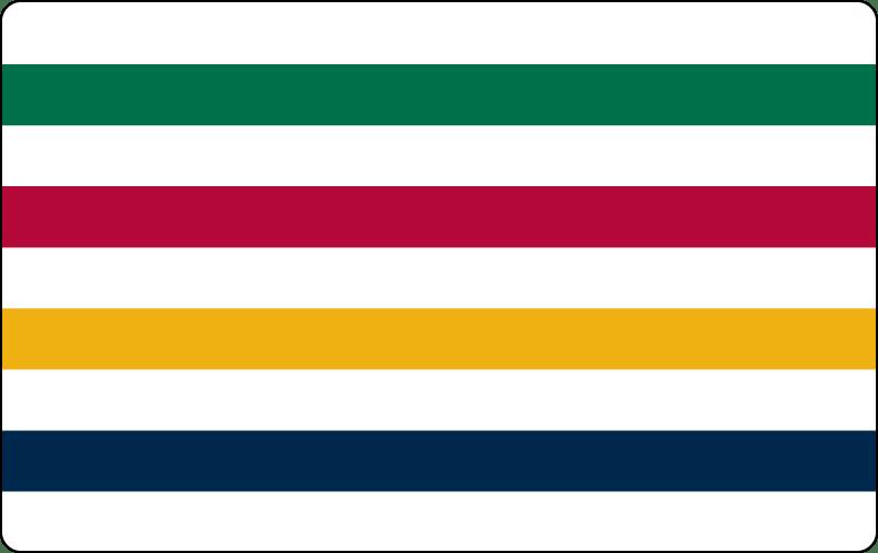 Hudson's Bay rewards card