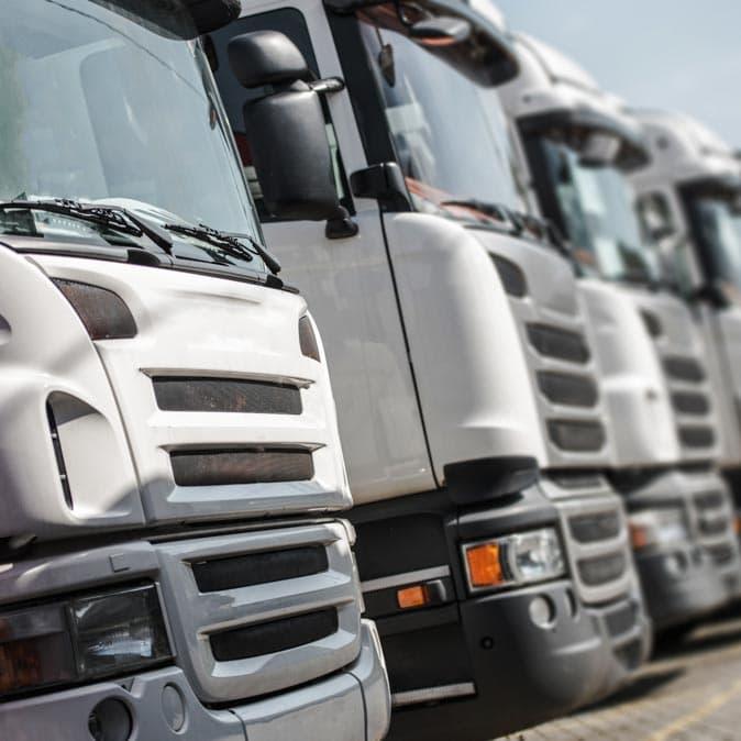 A fleet of white transport trucks.
